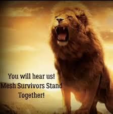 mesh survivors stand together