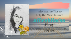 mesh hacks photo1